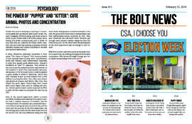 The Bolt 2018-2019/Issue 11